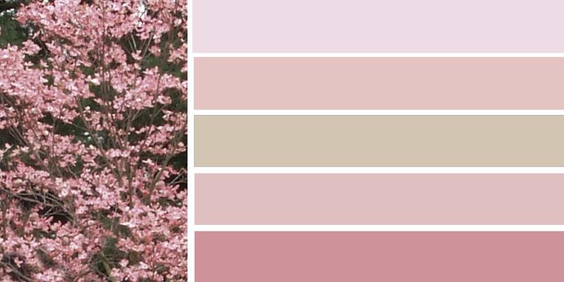 Модный цвет платья - бледный кизил